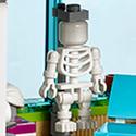 Squelette-41318