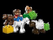 5646 Les bébés animaux de la ferme 2