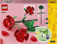 40460-Roses Back