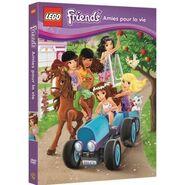 LEGO Friends Amies pour la vie