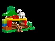 10582 Les animaux de la forêt 4