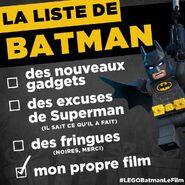 Vignette Batman Movie 31