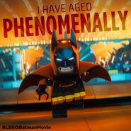 Vignette Batman Movie 12