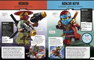 LEGO Ninjago Character Encyclopedia Updated and Expanded 3