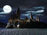 LEGO Harry Potter Années 1 à 4 1