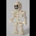 Squelette-60204