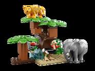 6156 Le safari 5