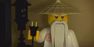 Sensei Wu Unplugging the Videogames