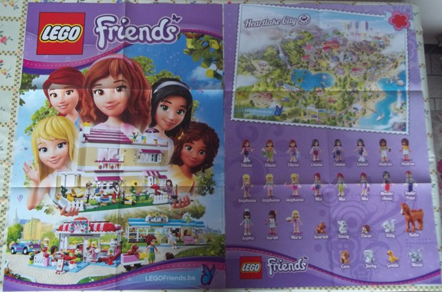 6013406 Friends Poster
