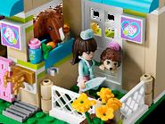 3188 La clinique vétérinaire 4