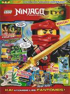 LEGO Ninjago 8