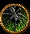 Araignée HEROICA mini