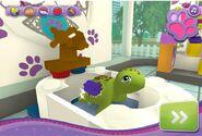 Scrubbing the turtle