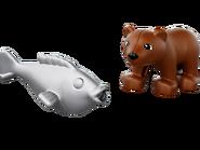 10576 Le repas de l'ours brun 3