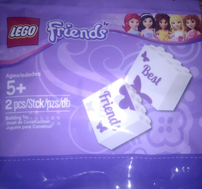 6024305 Best Friends Bricks