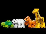 10801 Les bébés animaux du monde 3