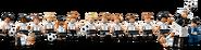 71014 Minifigures Série L'équipe de football d'Allemagne - La Mannschaft