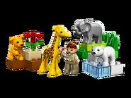 4962 Le zoo des bébés animaux