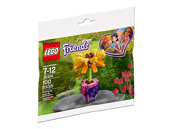 30404 Friendship Flower