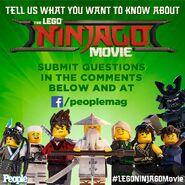 Vignette Ninjago Movie 14