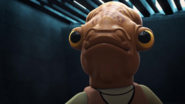 Admiral Ackbar don't speaks to Captain Phasma