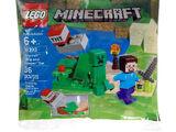 30393 Steve and Creeper Set