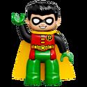 Robin-10842