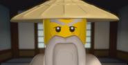 Sensei Wu Close-Up