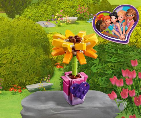30404 La fleur de l'amitié