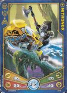 Nitronox Speedor Accessory card