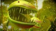 Predator Plant 1