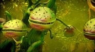 Predator Plant 3