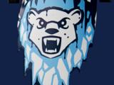 Ice Bear Tribe