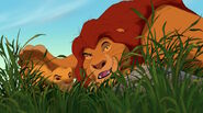 Mufasa-gives-Simba-pouncing-lessons-in-The-Lion-King