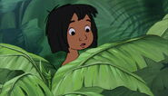 Mowgli se cache et obsérve shanti
