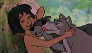 Mowgli avec ses frères et soeurs loups