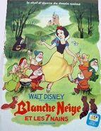 Affiche francaise 1973