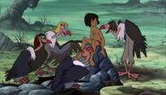 Mowgli et les vautours