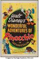 Pinocchiodis45