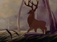 Grand-prince-foret-personnage-bambi-03