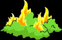 Buisson enflammé