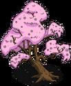 Cerisier du Japon.png