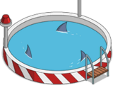 Piscine certifiée sans requin laser