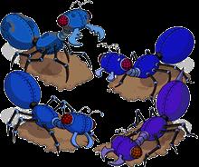 Pack fourmis mécaniques