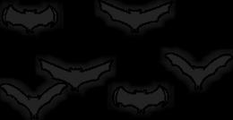 Chauve-souris volantes