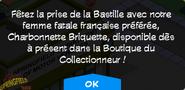 BoutiqueCharbonnetteBriquette