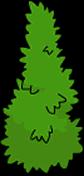 Arbuste haut (2)
