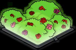 Holo-rosier