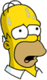 Homer Transpirant
