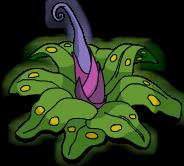 Plante préhistorique